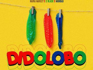 Naira Marley, C Black, Mohbad – Dido Lobo (Prod. by Rexxie)