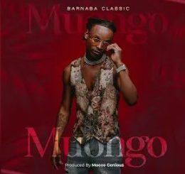 Barnaba Classic – Muongo