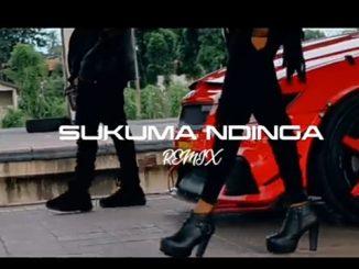 Rosa Ree – Sukuma Ndinga (Remix) Ft. Rayvanny