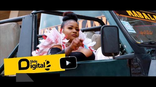 Shilole – Pindua Meza  mp3 download