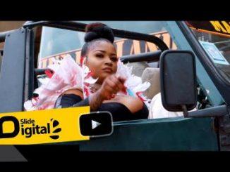 Shilole – Pindua Meza (Audio + Video)