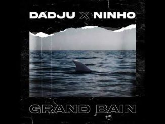Dadju – Grand Bain Ft. Ninho