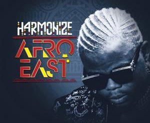 Harmonize – Inanimaliza Ft Mr. Blue