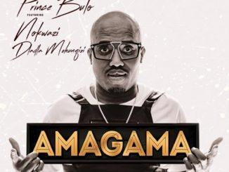 Prince Bulo – Amagama Ft. Nokwazi, Kyotic (Felo Le Tee Remix)