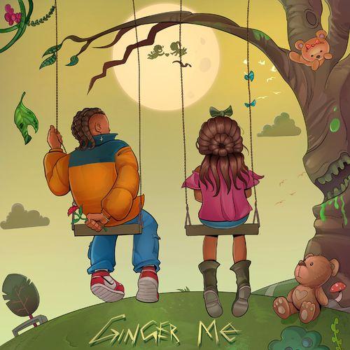 Rema – Ginger Me mp3 download