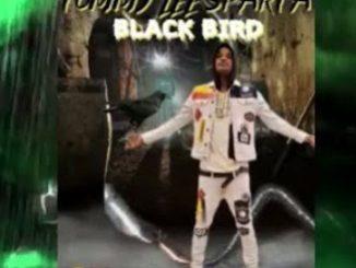 Tommy Lee Sparta – Black Bird