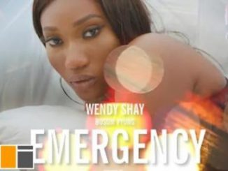 Wendy Shay – Emergency Ft. Bosom P-Yung