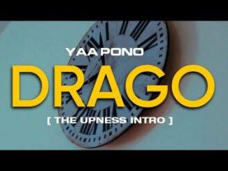 Yaa Pono – Drago (Freestyle)