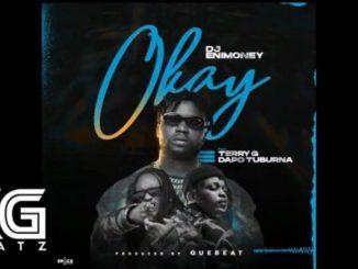 DJ Enimoney - Okay Instrumental Ft. Dapo Tuburna & Terry G