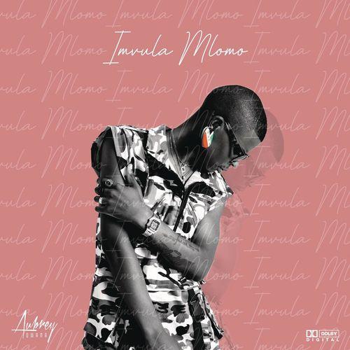 Aubrey Qwana – Ngakwenzani Ft. Emtee mp3 download