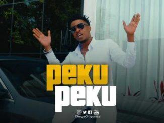 Chege Ft. Mrisho Mpoto – Pekupeku (Audio + Video)