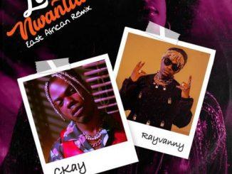 CKay Ft. Rayvanny – Love Nwantiti (East African Remix)