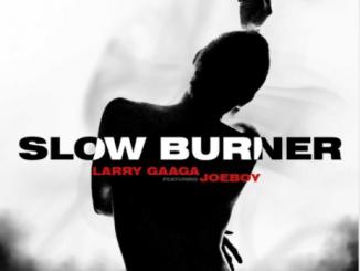 Larry Gaaga Ft. Joeboy – Slow Burner (Audio + Video)