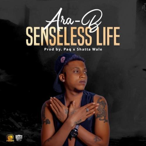 Ara-B – Senseless Life mp3 download