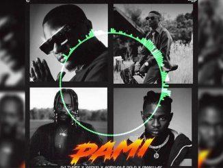 DJ Tunez – PAMI Ft. Wizkid, Omah Lay & Adekunle Gold (Instrumental) download