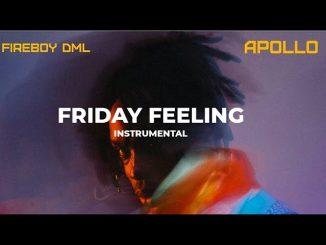 Fireboy DML – Friday Feeling (Instrumental) mp3 download