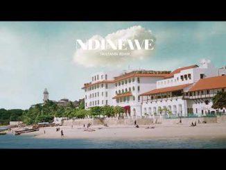 Gemma Griffin Ft. Linex & Barakah The Prince – Ndinewe (TZ Remix)