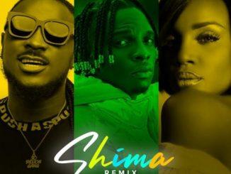 Idahams - Shima (Remix) Ft. Peruzzi, Seyi Shay