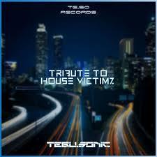 Tebu Sonic – Tribute to House Victimz mp3 download