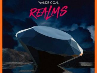 Wande Coal – Check