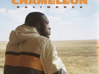 Daliwonga - Gumba Fire ft. DJ Maphorisa, Kabza De Small, Mkeys