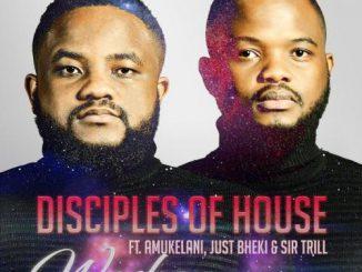 Disciples of House - Washa Ft. Amukelani, Just Bheki, Sir Trill Mp3 Download
