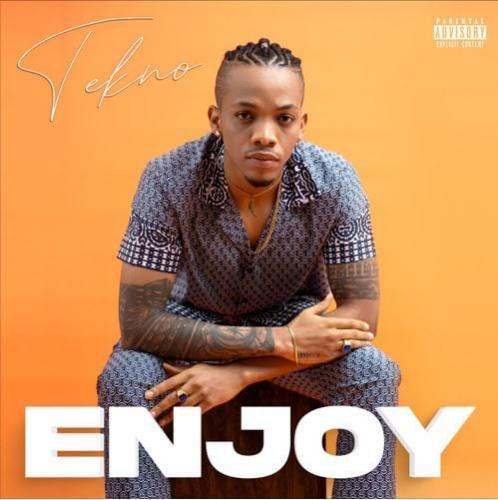 Tekno – Enjoy mp3 download