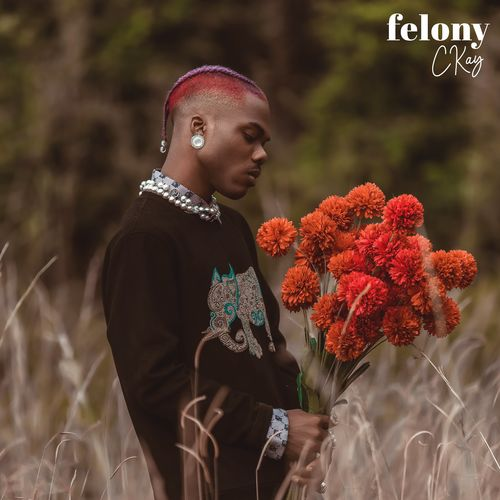 Ckay – Felony mp3 download