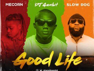 DJ Gambit - Good Life Ft. Mecorn x SlowDog Mp3 download