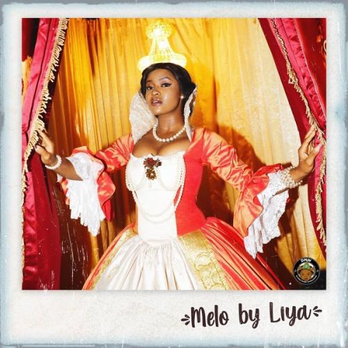 DMW Records Present: Liya – Melo mp3 download
