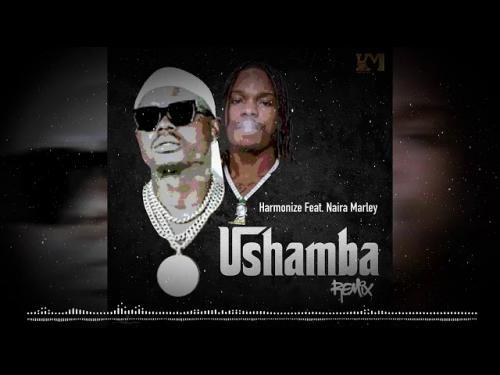Harmonize Ft. Naira Marley – Ushamba (Remix) mp3 download