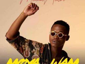 MalumNator - AwYebo Ft. De Mthuda, Ntokzin & MFR Souls