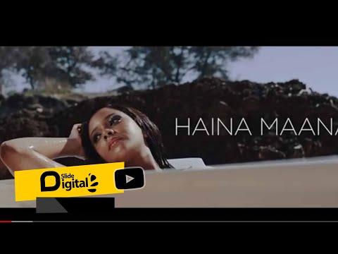 Mimi Mars – Haina Maana mp3 download