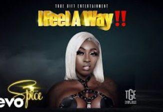Spice - I Feel A Way (Prod. by Demarco)