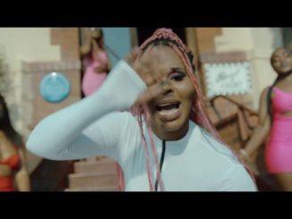 VIDEO: Kaygee Daking & Bizizi Ft. Mphow69 - Hello Summer