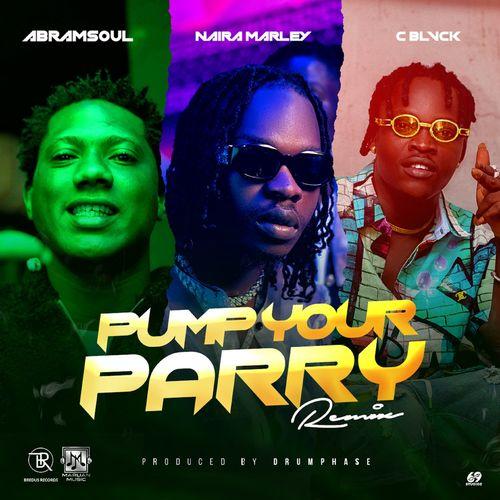 Abramsoul Ft. Naira Marley, C Blvck – Pump Your Parry (Remix) mp3 download