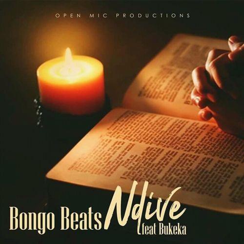 Bongo Beats – Ndive Ft. Bukeka mp3 download