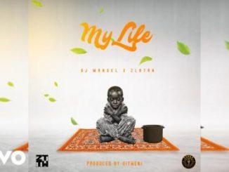 Dj Manuel x Zlatan - My Life