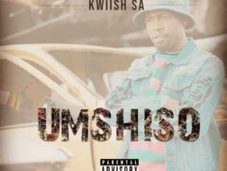 Kwiish SA & DJ Phat Cat - Ka Painelwa Ft. Steven Lee Lewis