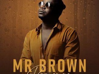 Mr Brown - Godobori Ft. Makhadzi, Nox