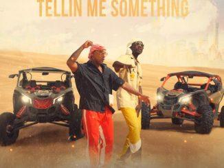 Nelson Freitas - Tellin Me Something Ft. Mr Eazi [Audio + Video]