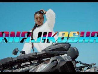 VIDEO: Harmonize - Anajikosha mp4