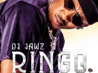DJ Jawz - Ringo Ft. Bob Mabena, Reece Madlisa, Zuma, Busta 929