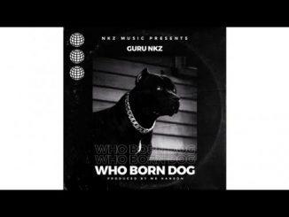 Guru NKZ - Who Born Dog