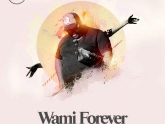 Heavy K - Wami Forever Ft. Soulstar, Mo T