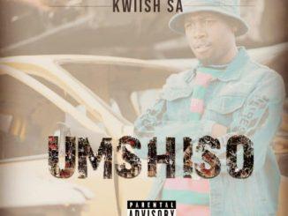 Kwiish SA - The Vaccine Ft. Kelvin Momo