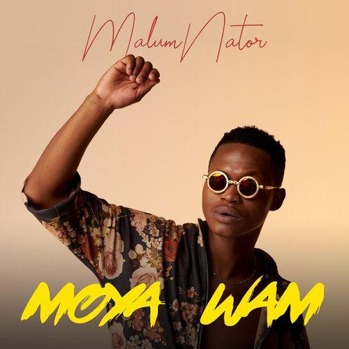 MalumNator – Iy'Phuzo Ft. De Mthuda, Ntokzin mp3 download