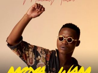 Malumnator - Make You Happy Ft. De Mthuda & Ntokzin