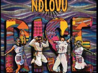 Ndlovu Youth Choir - Homeless