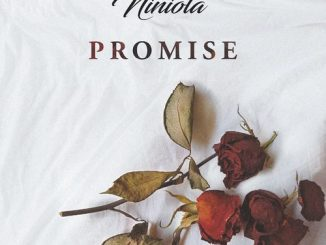 Niniola - Promise Mp3 Audio